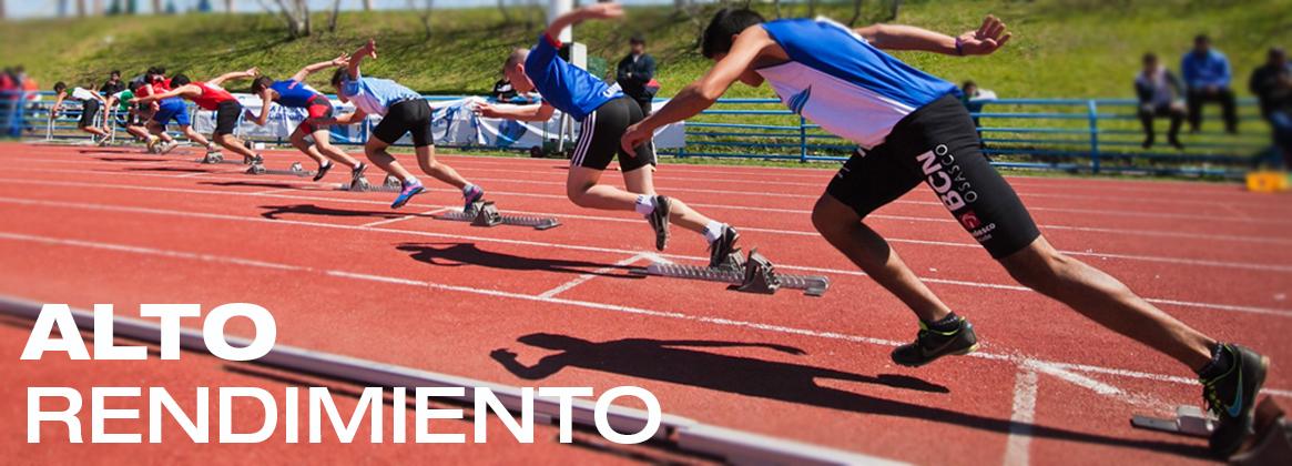 Imagen de la noticia Programa de alto rendimiento deportivo en la UBA