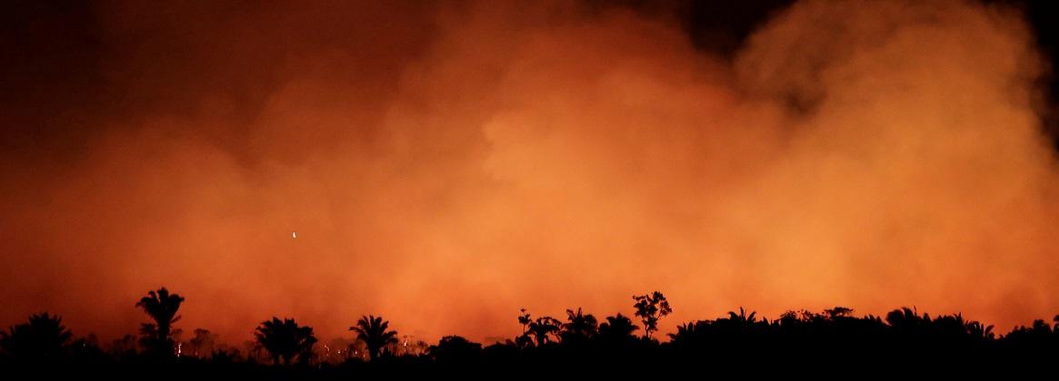 Imagen de la noticia >Se incendia el Pulmón del planeta