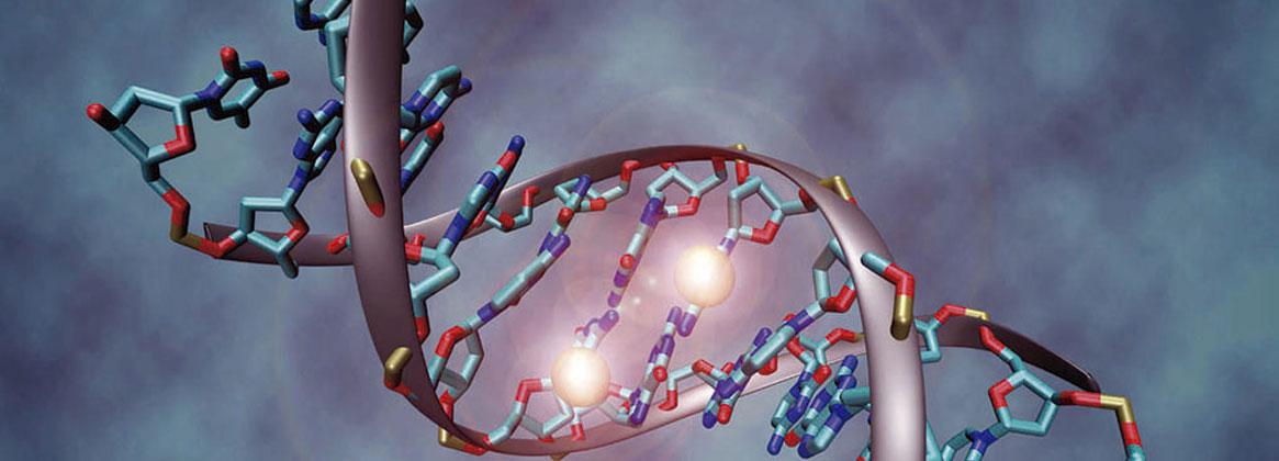 Imagen de la noticia Maestría en Biología Molecular Médica