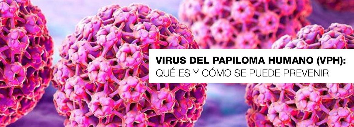 Imagen de la noticia Día internacional de la concientización sobre el VHP
