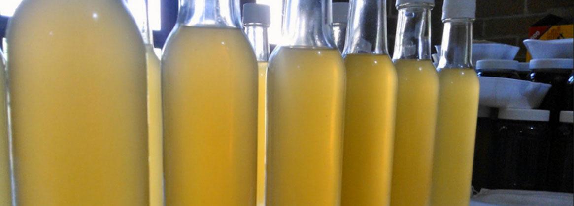 Imagen de la noticia Derivados de los productos de la colmena