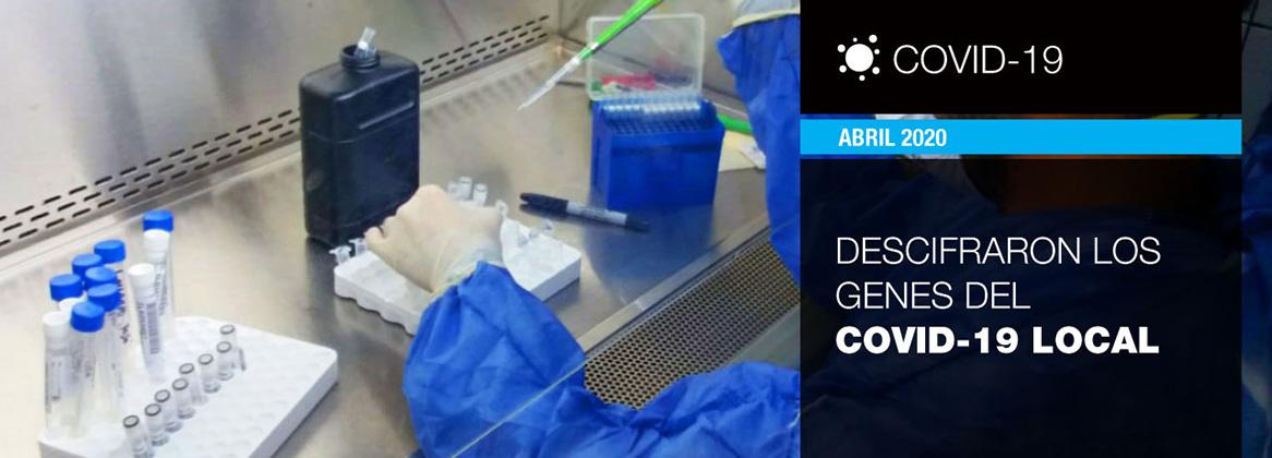 Imagen de la noticia Secuenciación local del coronavirus: clave para el desarrollo de una vacuna