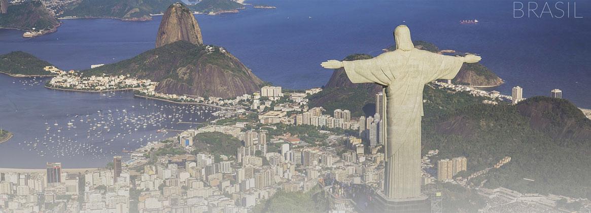 Imagen de la noticia > Becas de doctorado en Brasil